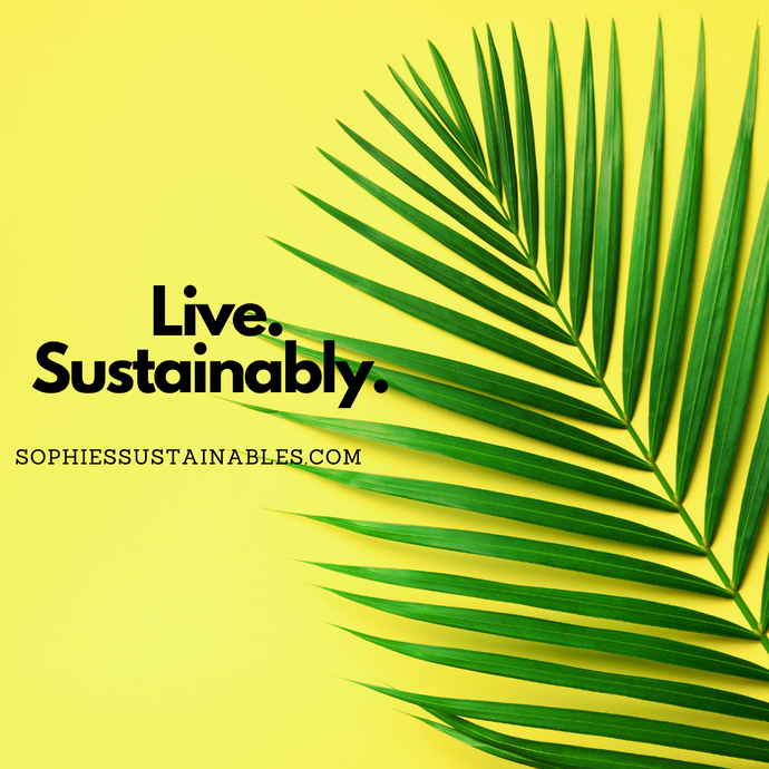 How to Live More Sustainably in 2021