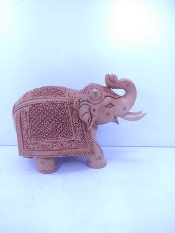 Wooden Elephant Salaminder Carving