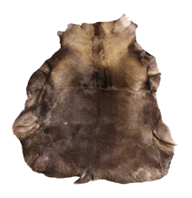 Russian Reindeer Hide
