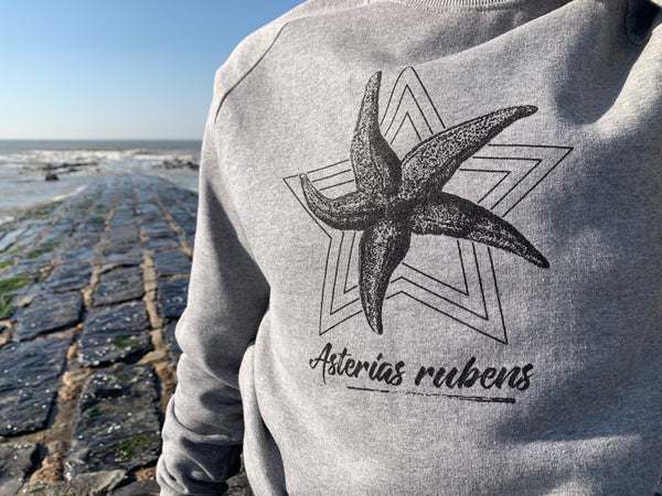Asterias rubens sweater