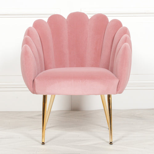 Pink scalloped chair oyster chair cocktail chair