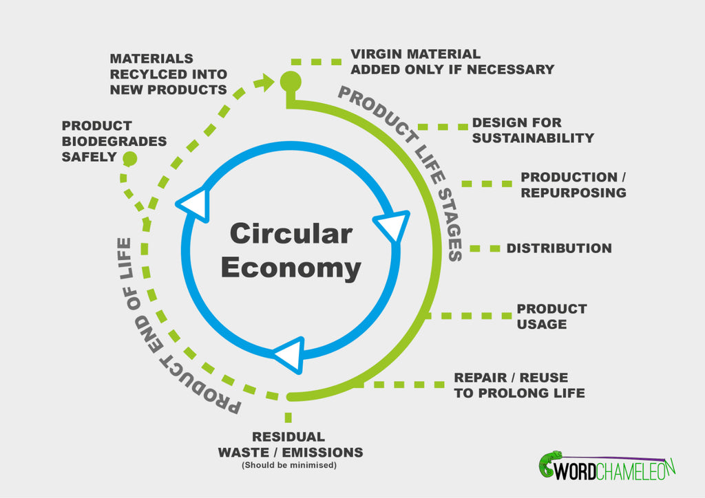 An informative chart displaying a visual representation of how the circular economy works.