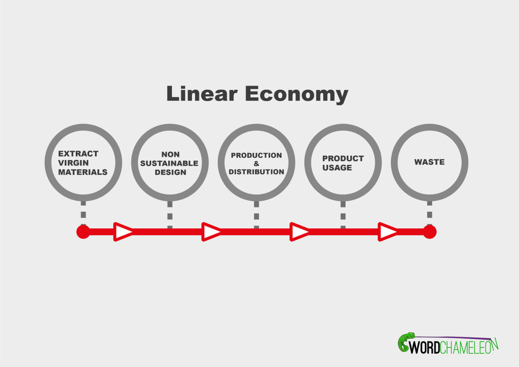 An informative chart displaying a visual representation of how the linear economy works.