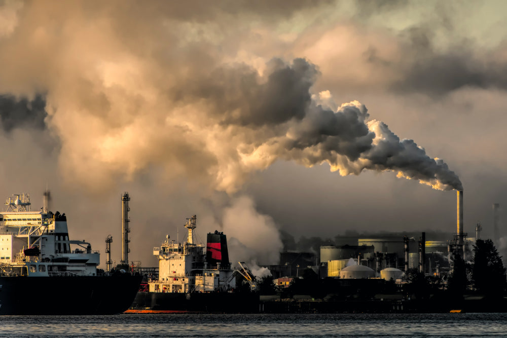 Two cargo ships pulling into an industrial harbour next to a factory emitting smoke into the environment.