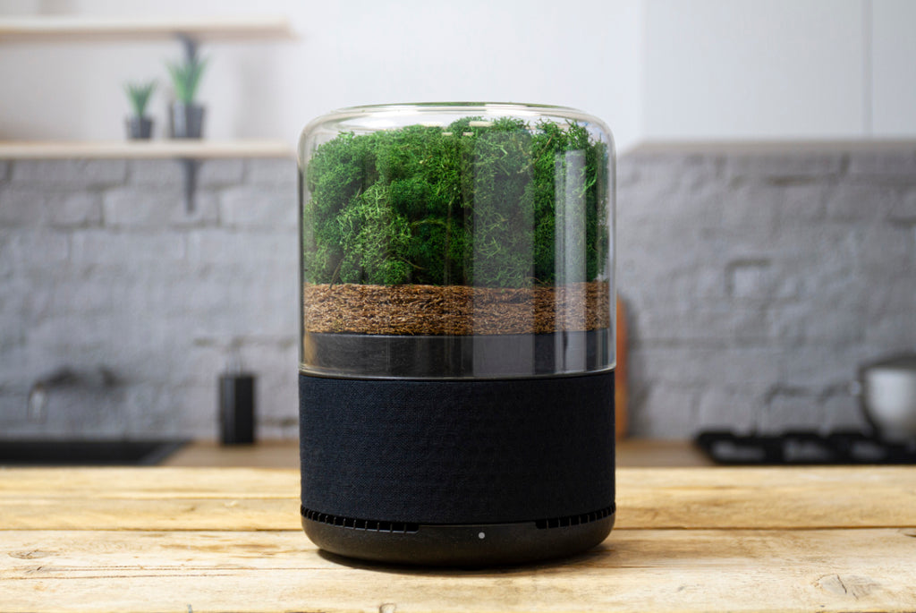 An air filter designed by company briiv for the circular economy, sitting on a kitchen table.