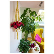 Load image into Gallery viewer, Macrame plant hanger kit