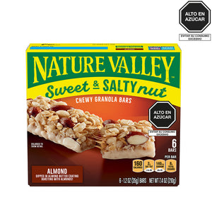 NATURE VALLEY SWEET & SALTY NUT X6