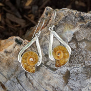 Ammonite Fossil and Sterling Earring Set 1