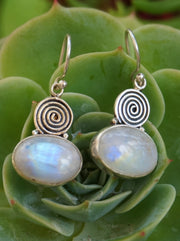Moonstone Earring Set 5