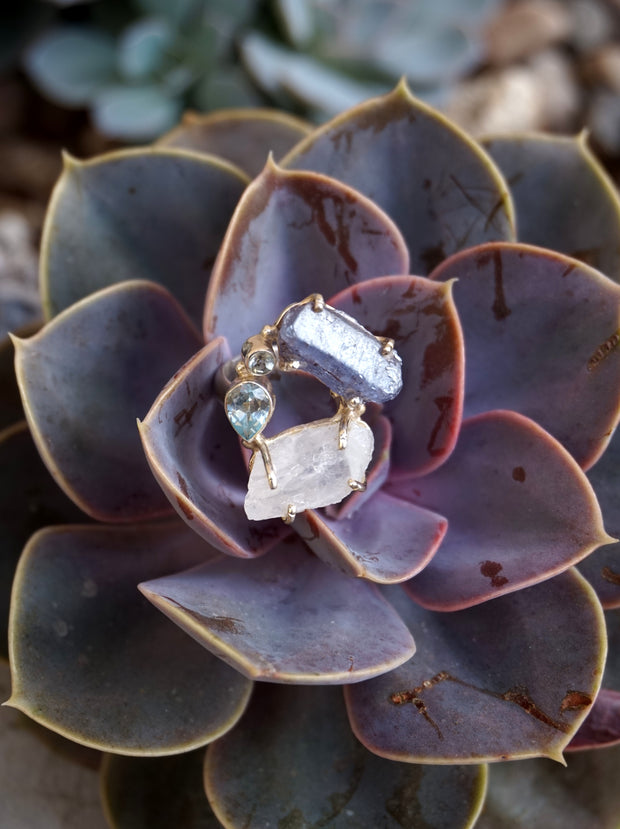 Garden Beauty Ring 1 with Tanzanite and Moonstone