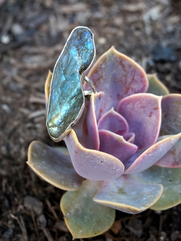 Free-form Rough Labradorite Ring 1