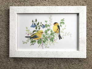 Goldfinch in spring white frame 7x11