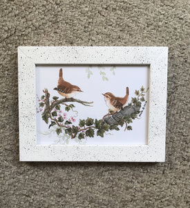 5x7 Wrens on ivy