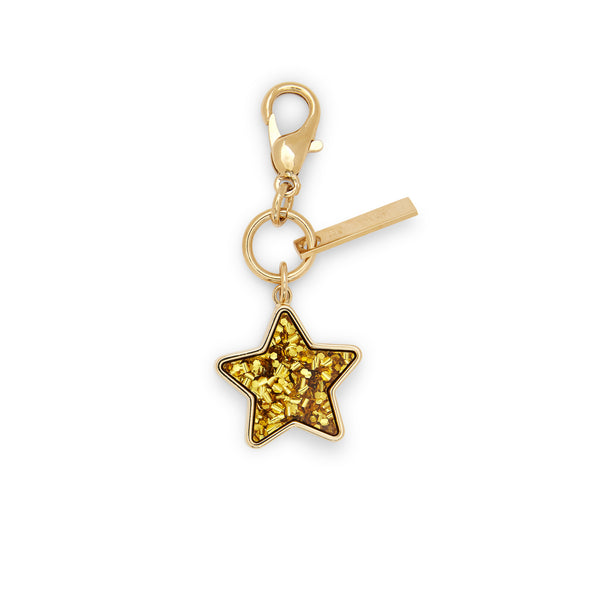 Edie Parker designer Star Charm in gold confetti with gold hardware.