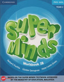 Super Minds Workbook 1B Year 2