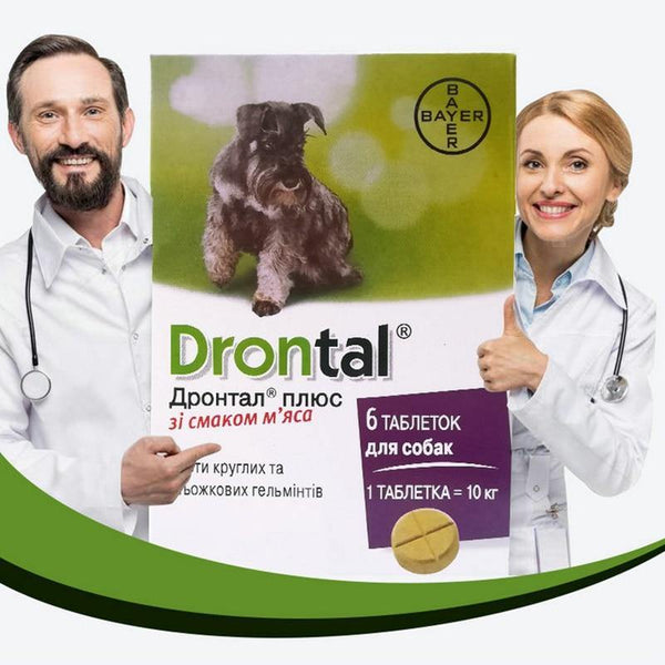 Drontal Plus Allwormer for All Size Dogs and Puppies - FastAndSafeStoreFastAndSafeStore