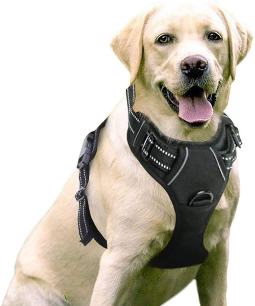 Dog Harness, No-Pull Pet Harness with 2 Leash Clips, Adjustable Soft Padded Dog Vest, Reflective No-Choke Pet with Easy Control - FastAndSafeStoreFastAndSafeStore
