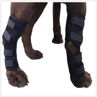 Extra Supportive Dog Canine Rear Leg Hock Joint Wrap Protects Wounds Prevents Injuries and Sprains Helps Arthritis - FastAndSafeStoreFastAndSafeStore