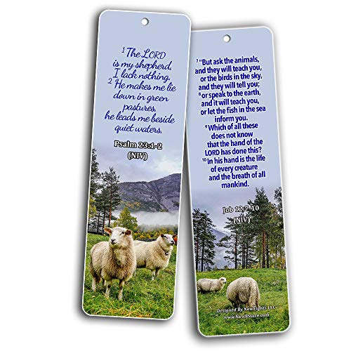 Bible Scriptures about God's Creation Bookmarks (30 Pack) - Handy Bible Texts That Talks About God?s Creation