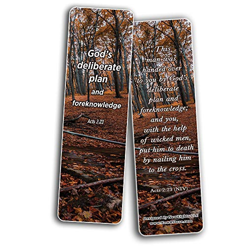 Seek God's Plan Memory Verses Bookmarks (30-Pack) - Compilation of Bible Scriptures Cards Perfect Giveaways for VBS and Ministries