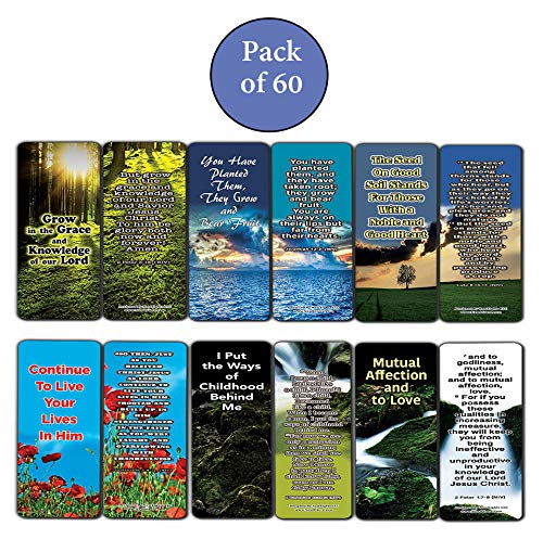 Everything You Need for Growth Bible Bookmarks (12-Pack)