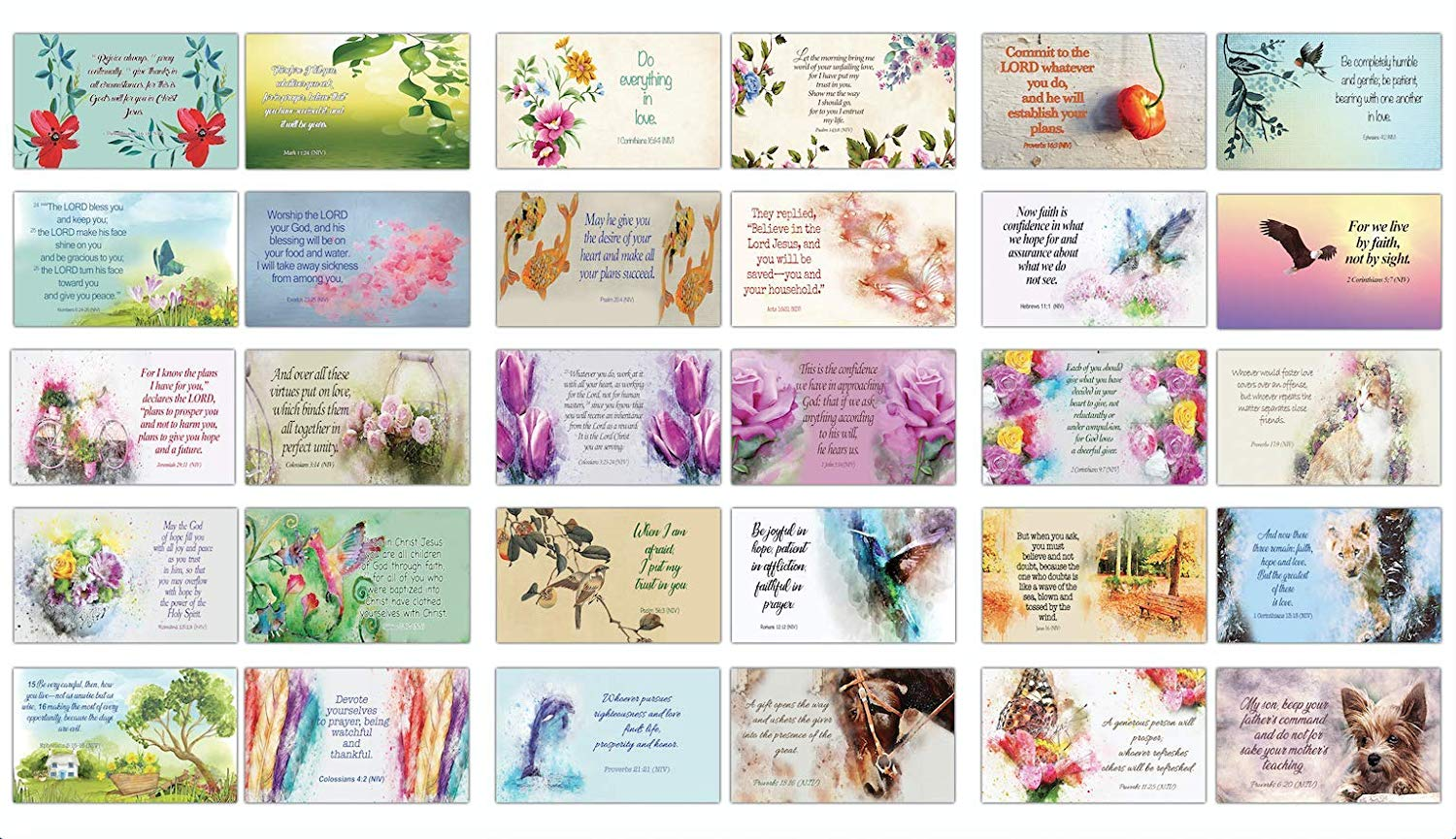 Scriptures Cards Flashcards (30-Pack)