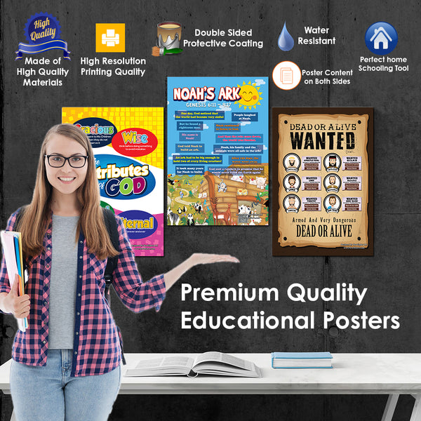 NewEights Bible Knowledge Series 1 Learning Posters (6-Pack) – Unique Home Schooling Tools