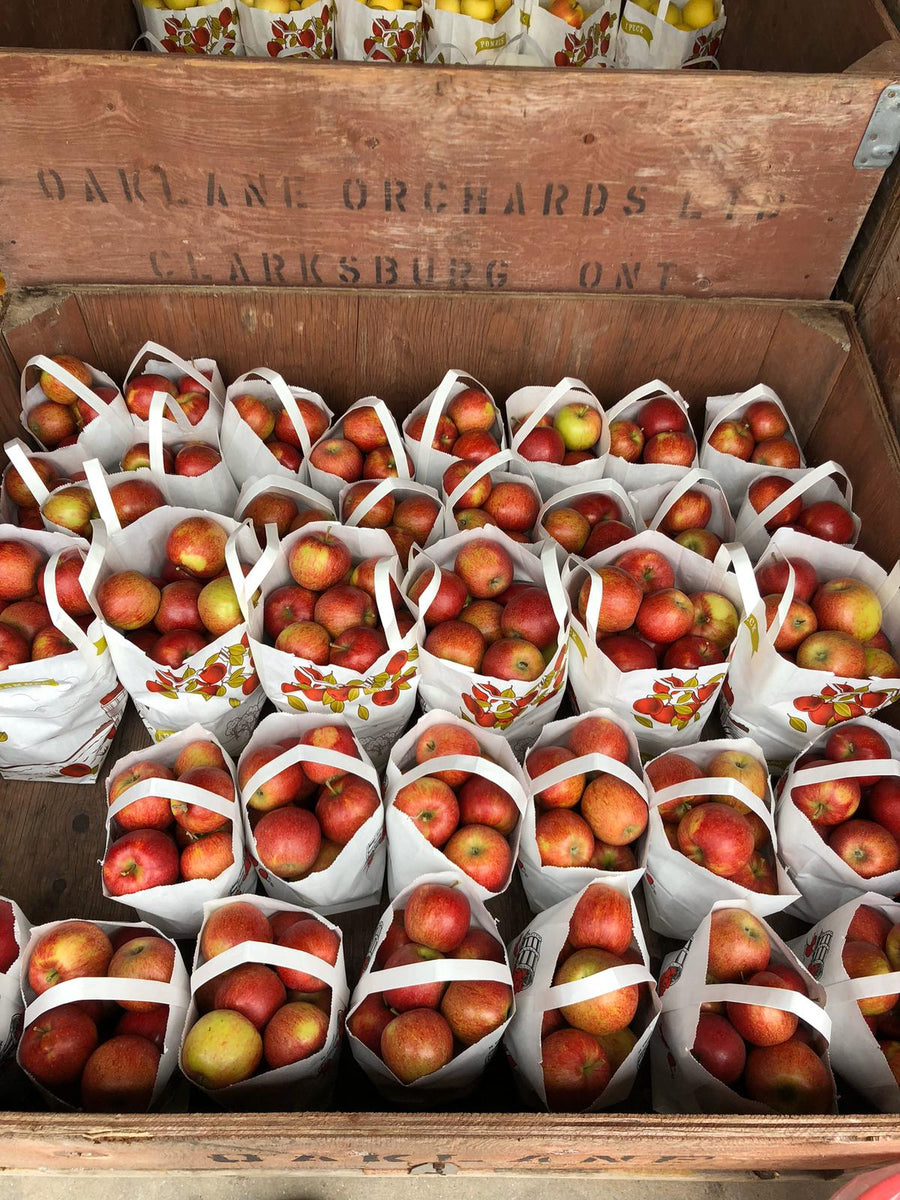 Ontario Apples