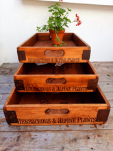 Load image into Gallery viewer, The Treseders Nursery Box / Tray