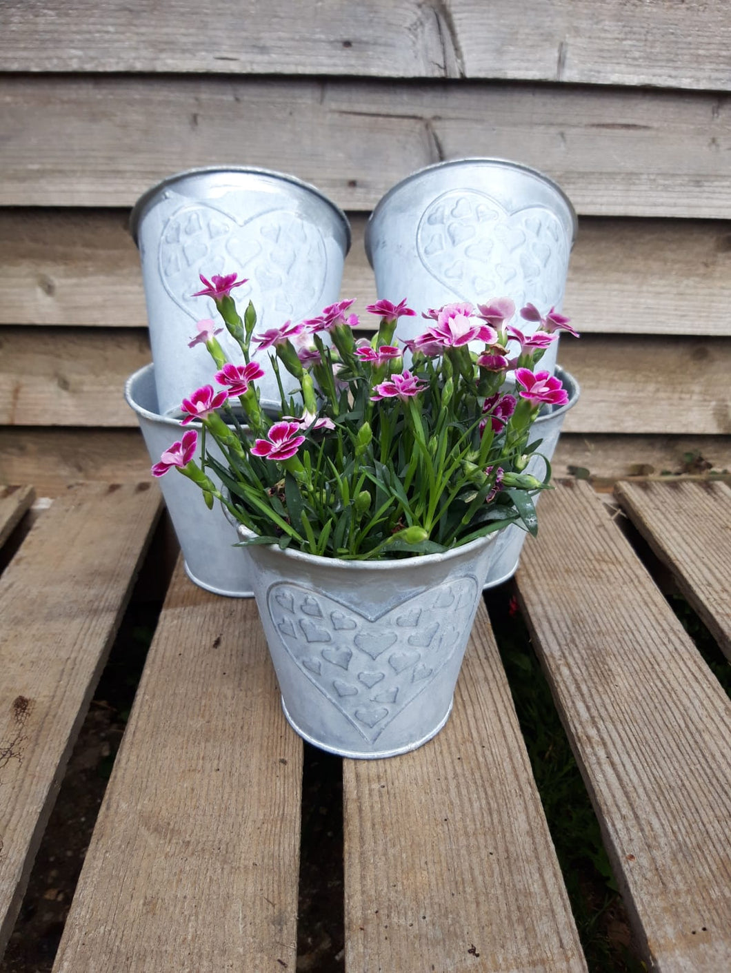 Embossed Heart Planters