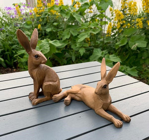 Lounging Hare