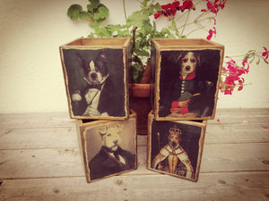 Decorative Style Dog Boxes  (2 Designs Available)