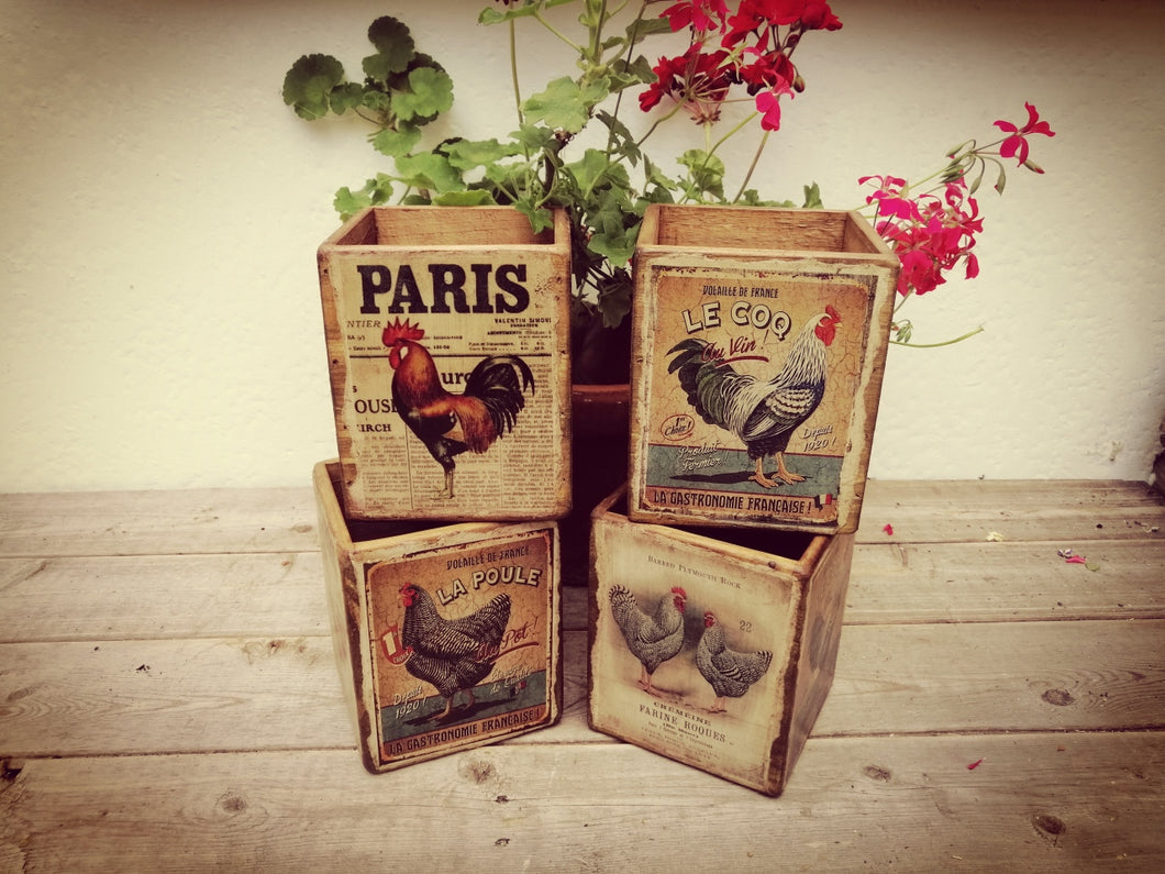 Decorative Styled Box of 'French Chickens'
