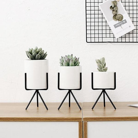 AvaBellucci™ 3 Set Ceramic Flower Planters with Minimalistic Stand
