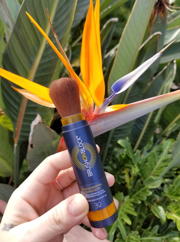 Brush On Block® being held near a bird of paradise flower.