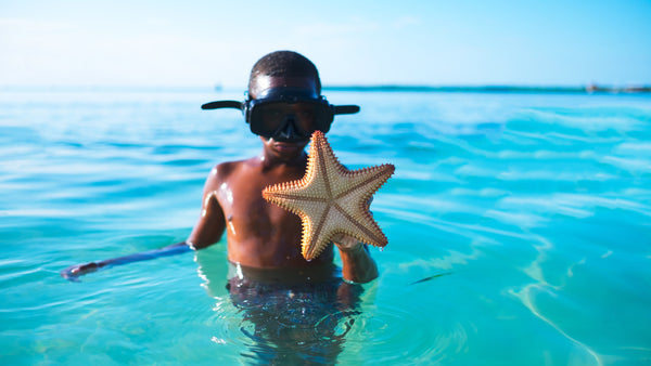 Brush On Block image of boy snorkeling with starfish