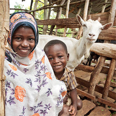 Heifer International Gift