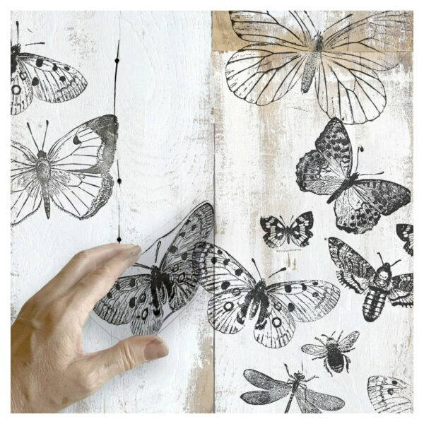 IOD Clear Stamps - Butterflies
