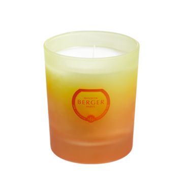 Coconut Monoï Candle
