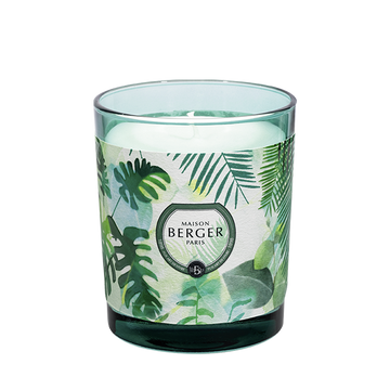 Fresh Eucalyptus Candle