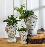 Goddess Head Planter - Small