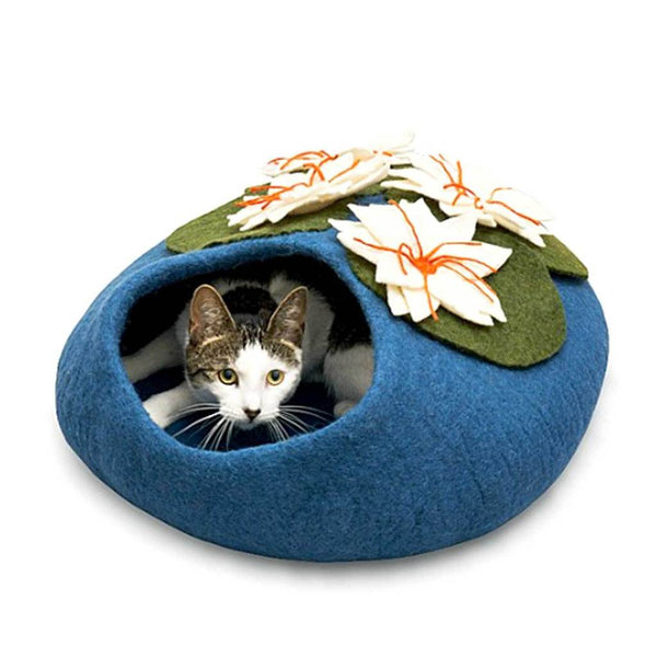 Lilly Pond Catcave