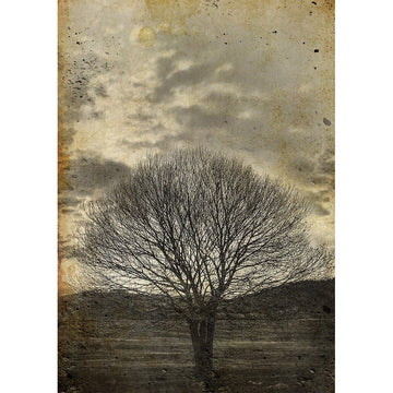 Decoupage Paper - Lone Sepia Tree