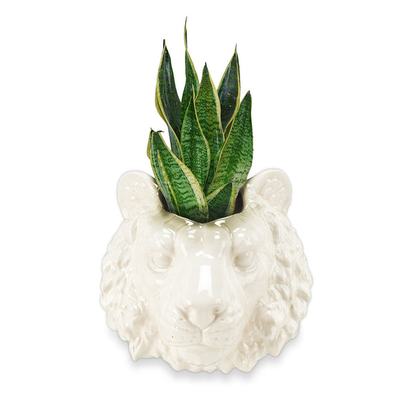 Tiger Head Wall Planter