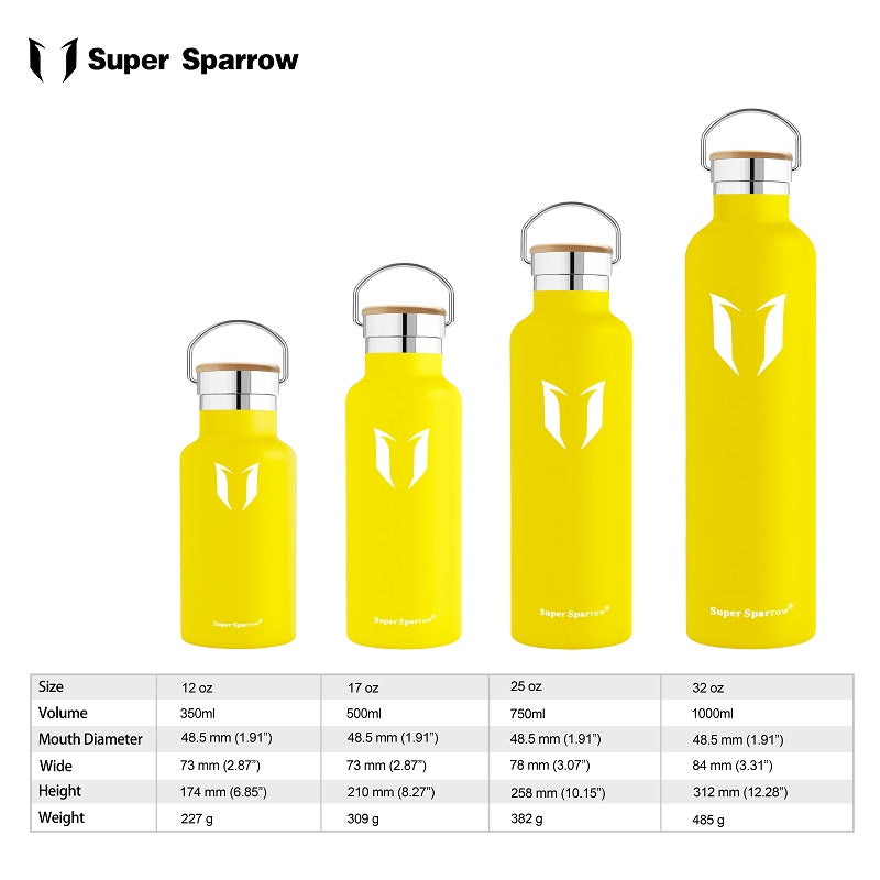 Insulated Stainless Steel Water Bottles, 620ML / 21OZ