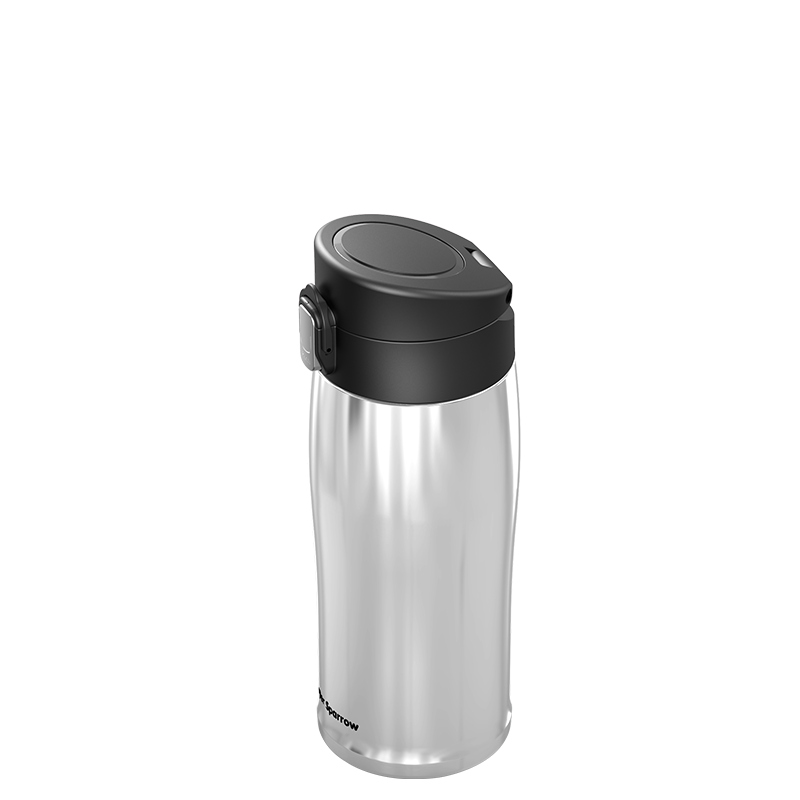Insulated Stainless Steel Water Bottles, 500ML / 17OZ
