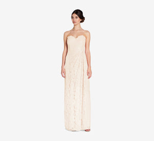 Astrid Strapless Lace Dress In Champagne