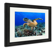 Load image into Gallery viewer, Framed Print, Sea Turtle