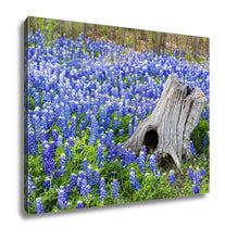 Load image into Gallery viewer, Gallery Wrapped Canvas, Austin Beautiful Texas Bluebonnets Field And Tree Stump