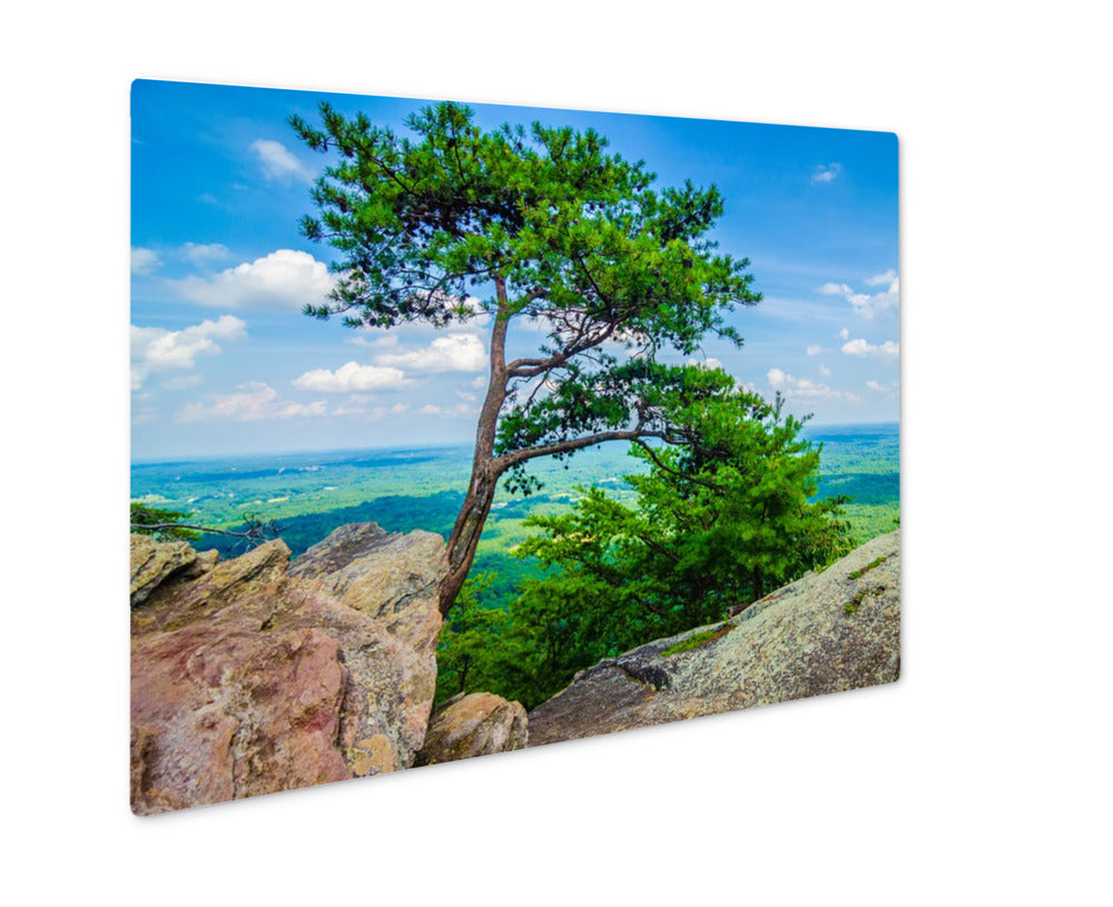 Metal Panel Print, Beautiful Aerial Landscape Views From Crowders Mountain North